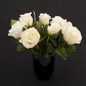 Rosas em preto
