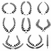 Set From Black Laurel Wreath