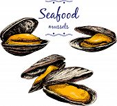 Seafood. Mussels.