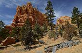 Red Canyon Rocks
