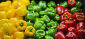 picture of yellow-pepper  - Yellow - JPG