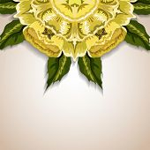 Hand drawn abstract vector background with floral ornament