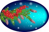 illustration with fir and rowan tree branches on blue background