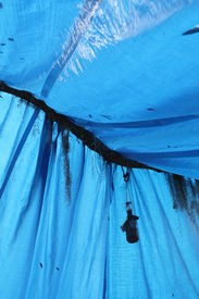 picture of tarp  - a picture of a stretched blue tarp - JPG