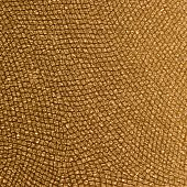 Animal Skin and Material Pattern