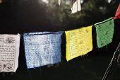 picture of prayer  - Colourful Prayer Flags hanging from a suburban verandah - JPG