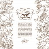 image of outline  - Vector illustration Outline hand drawn sketch seamless vegetable border flat style - JPG