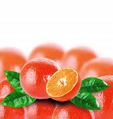 picture of clementine-orange  - orange tangerines with green leaves on a white background - JPG