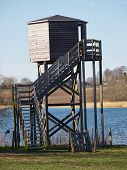 stock photo of observed  - Bird watching birding wildlife observation tower in a nature park - JPG