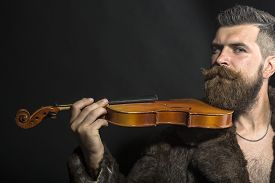 image of long beard  - Musical brutal unshaven man with long beard and hendlebar moustache in brown fur coat with collar and chain on chest holding wooden violin standing on black background copyspace horizontal picture - JPG