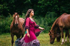 image of shepherdess  - Beautiful gypsy in violet dress with horses  - JPG