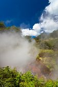 Steaming geothermal area, New Zealand