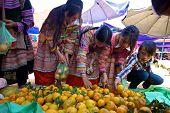 Flower H'Mong People Vietnam