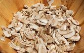 Bald Mushrooms