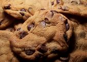 image of chocolate-chip  - Color photo of fresh hot chocolate chip cookies - JPG