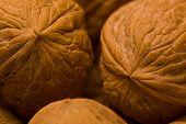 Walnuts I
