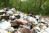 rubbish heap