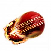 stock photo of cricket bat  - Cricket ball - JPG