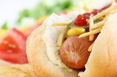 picture of hot dog  - Close up of a Hot Dog with vegetables - JPG