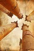 Corinthian columns of Artemis temple in Jerash, Jordan on grunge parchment paper background
