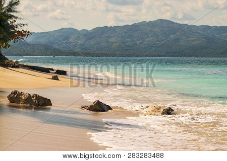 poster of Travel Vacation Tropical Destination. Tropical Tree Beach Landscape. Travel Vacations Destination. T