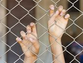 Hands Grabbing Mesh Cage