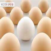 White egg concept. Vector Illustration