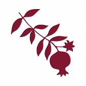 Sketch With Pomegranate On Branch With Leaves And Flower Silhouette. Red Pomegranate Icon Vector Ill poster