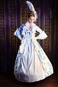 Portrait of the elegant woman in medieval era dress.
