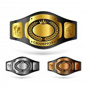 picture of black-belt  - Champion belt - JPG
