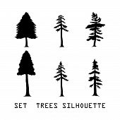Set Detailed Vectoral Trees Silhouette.vector Illustration Isolated On White Background. Pine Africa poster