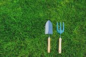 Garden Tools On Green Lawn Background. Seasonal Spring Or Summer Yard Work Concept, Growing And Seed poster