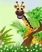 cute giraffe cartoon smiling