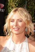 LOS ANGELES - JUL 17:  Maria Sharapova arrives at the 2013 ESPY Awards at the Nokia Theater on July