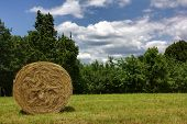 pic of hay bale  - Hay bale in a field with trees and cloudy sky in background - JPG