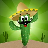 Cactus With Sombrero