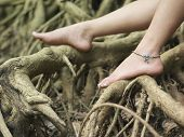 Closeup of a young woman's bare feet on roots