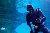 Scuba diver underwater near to sunken sailing ship in oceanarium with suction cup and brush for cleaning glass