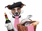 stock photo of french beret  - french dog with red wine and Picnic basket - JPG