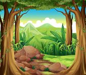image of cloud formation  - Illustration of the rocks at the forest - JPG