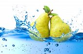 pear splash