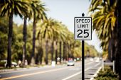 stock photo of traffic rules  - Speed Limit 25 sign on the road with palms - JPG