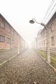pic of nazi  - Electric fence in former Nazi concentration camp Auschwitz I - JPG