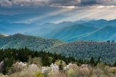 Southern Appalachian Mountain Spring Seasonal Scenic