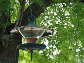 A Glass And Metal Birdfeeder Hanging From A Tree