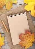 Blank notepad and colorful autumn maple leaves on wooden table background