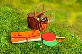 Picnic Basket,  Blanket,  Racquetball In The Grass