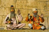 stock photo of hermit  - Indian sadhu  - JPG