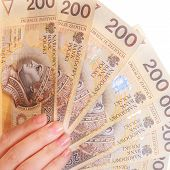 Female Hand Holding Polish Currency Money Banknote