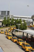 New York Taxi line next to British Airways Terminal 7 at John F Kennedy International Airport in NY